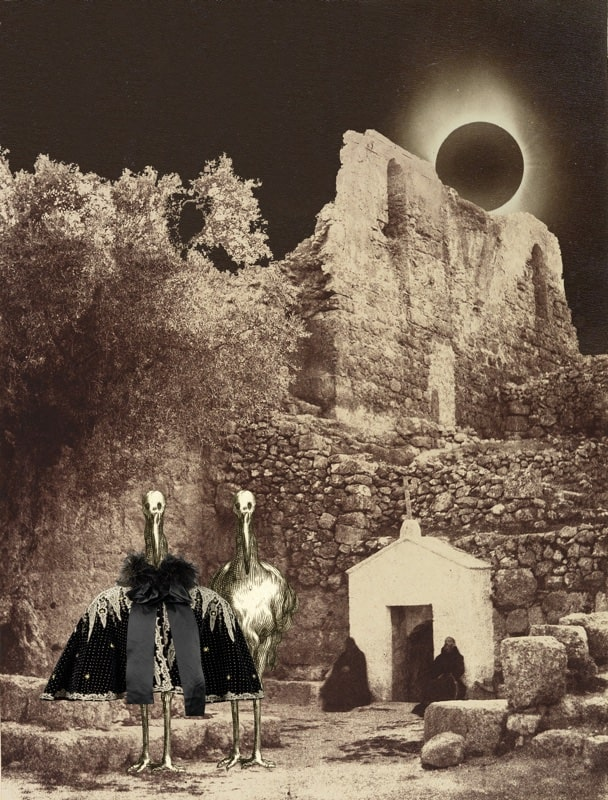9. Cloaked & Uncloaked Storks at an Eclipse of the Sun