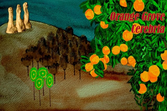 orange grove cerebria